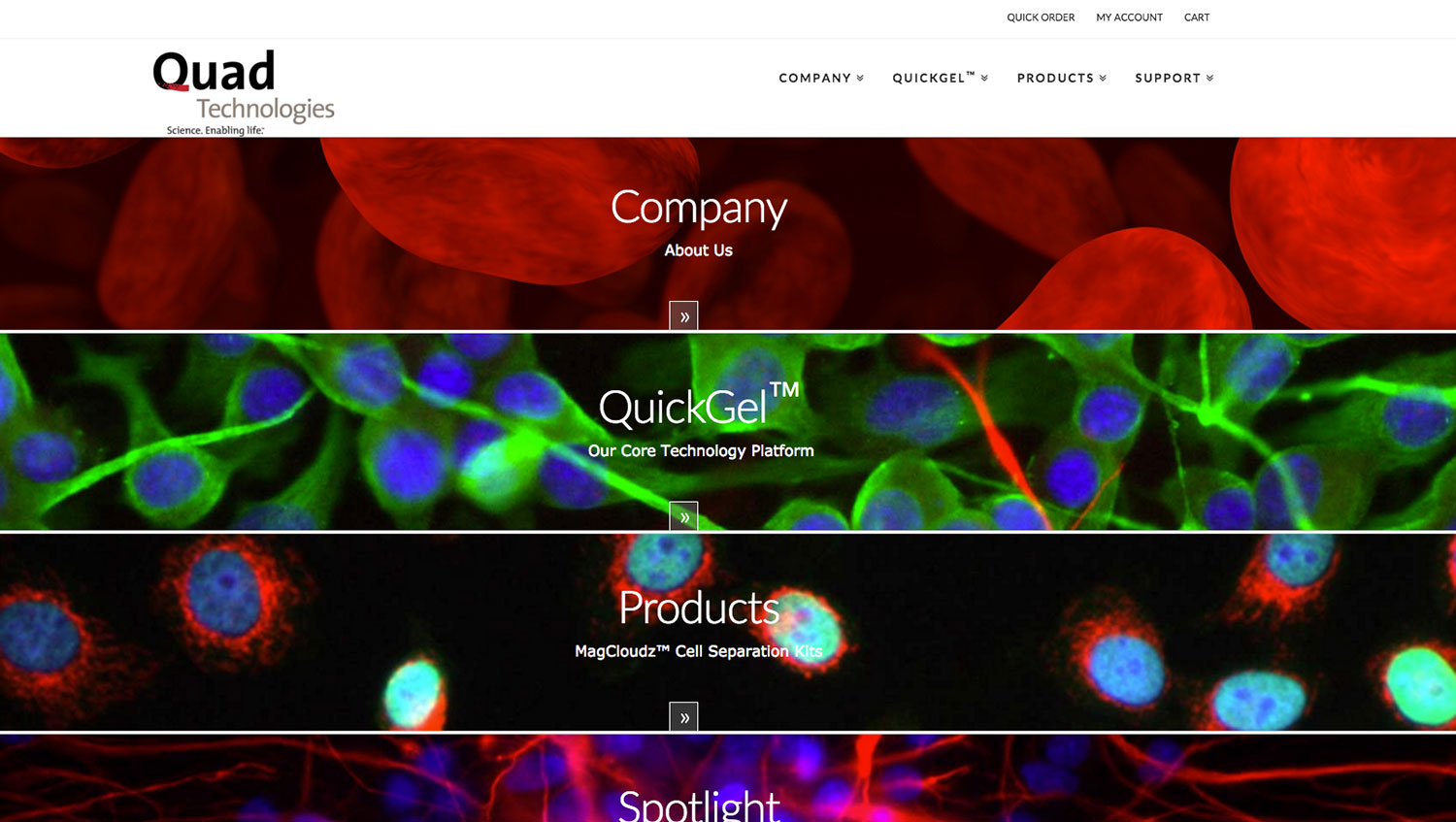Quad Technologies Home Page